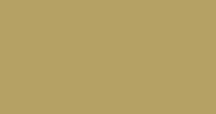 Tranziam Logo